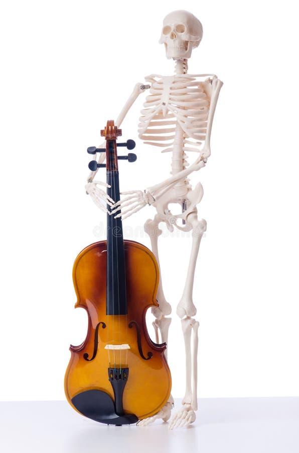 Esqueleto com o violino no branco fotografia de stock royalty free