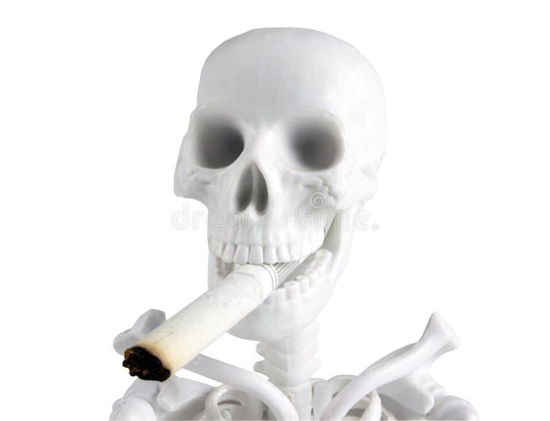 Esqueleto com a ponta de cigarro (isolada) fotografia de stock royalty free