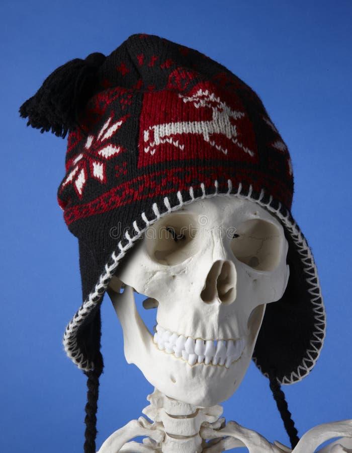 Esqueleto con el sombrero del invierno foto de archivo