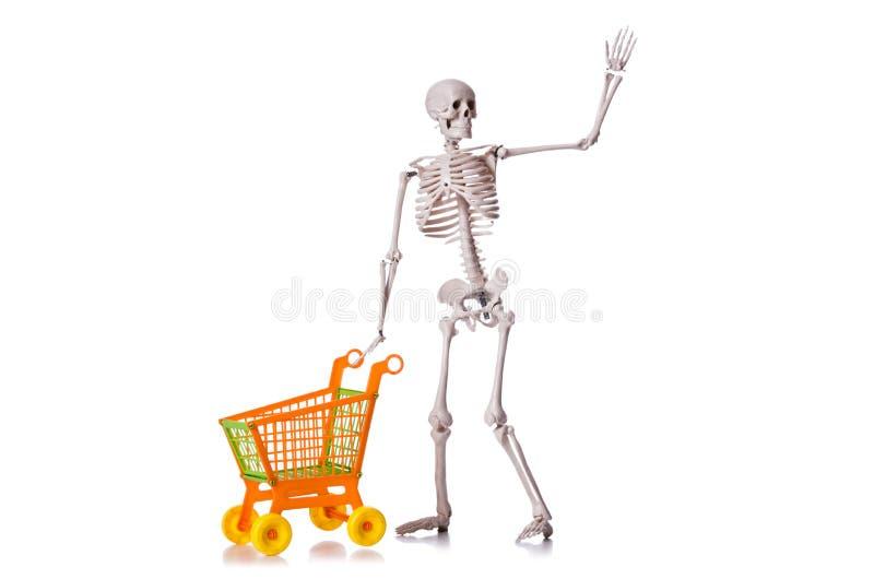 Esqueleto con la carretilla del carro de la compra aislada imágenes de archivo libres de regalías