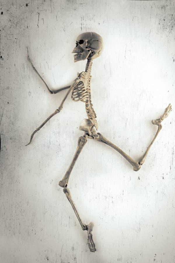 Esqueleto da dança ilustração do vetor