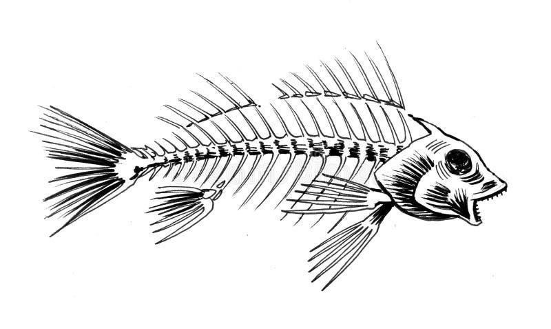 Esqueleto de los pescados stock de ilustración