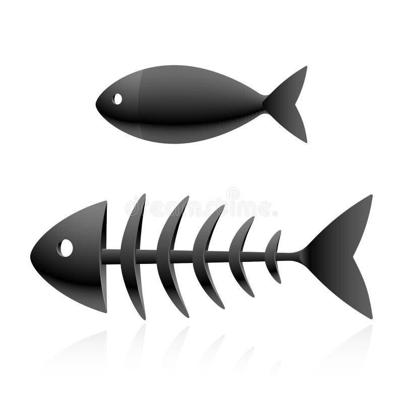 Esqueleto de los pescados libre illustration