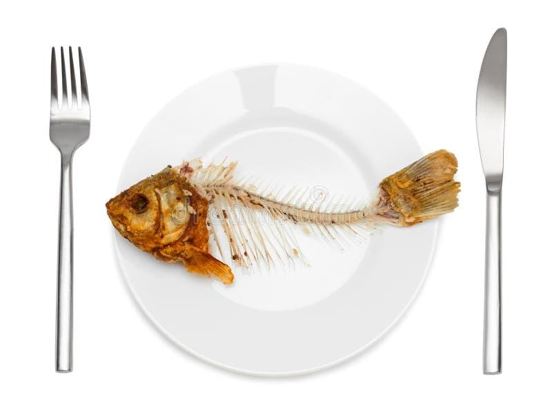 Esqueleto de los pescados en la placa fotografía de archivo libre de regalías