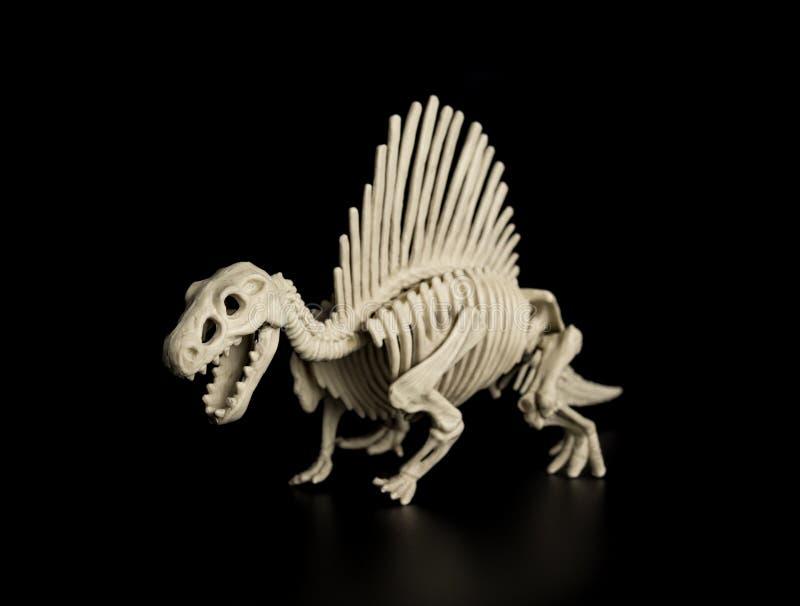 Esqueleto de Spinosaurus fotos de archivo