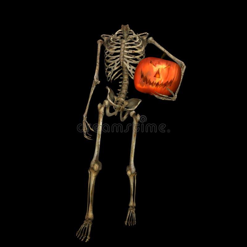 Esqueleto decapitado con la calabaza ilustración del vector