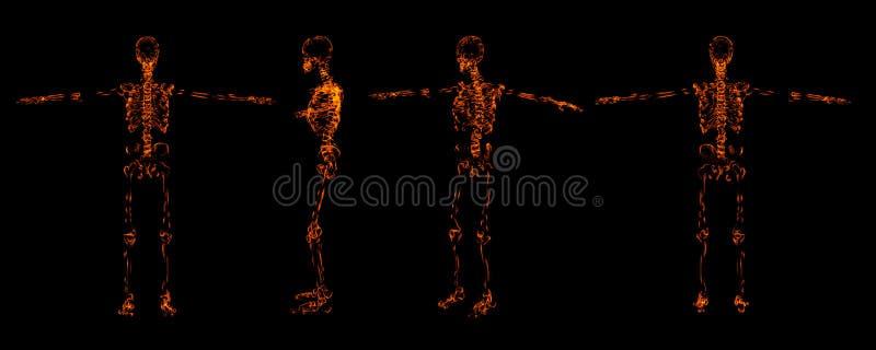 Esqueleto del fuego ilustración del vector