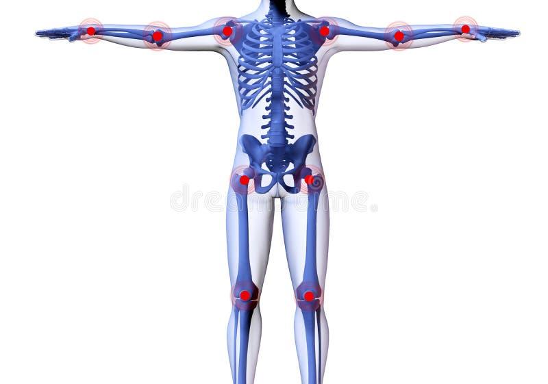 Esqueleto do homem ilustração do vetor