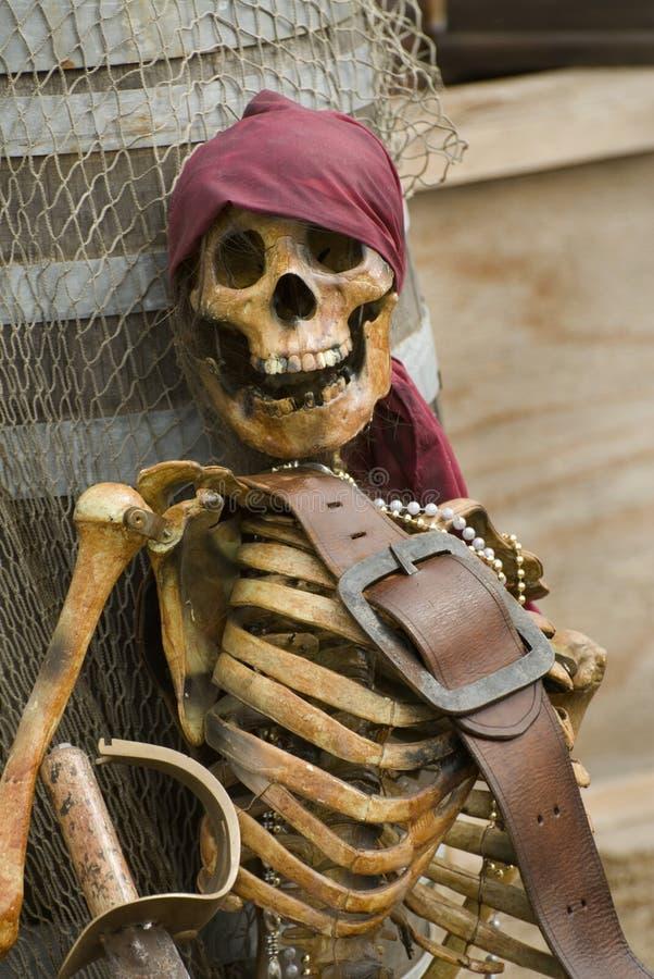 Esqueleto do pirata foto de stock