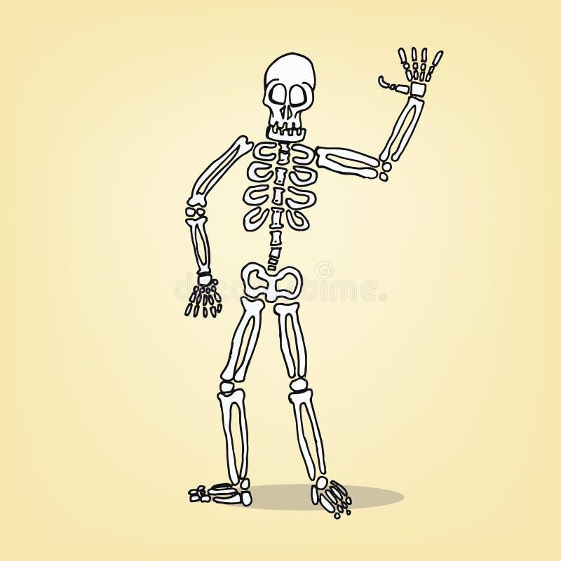 Esqueleto dos desenhos animados ilustração royalty free
