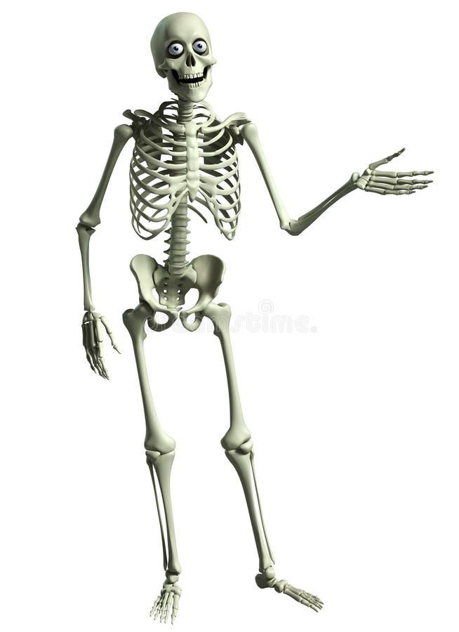 esqueleto dos desenhos animados 3d ilustração royalty free
