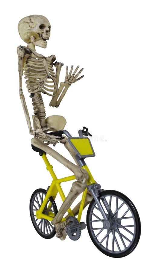 Esqueleto em uma bicicleta imagem de stock royalty free