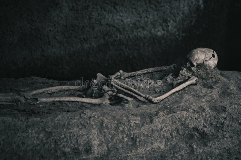 Esqueleto en la arena fotos de archivo