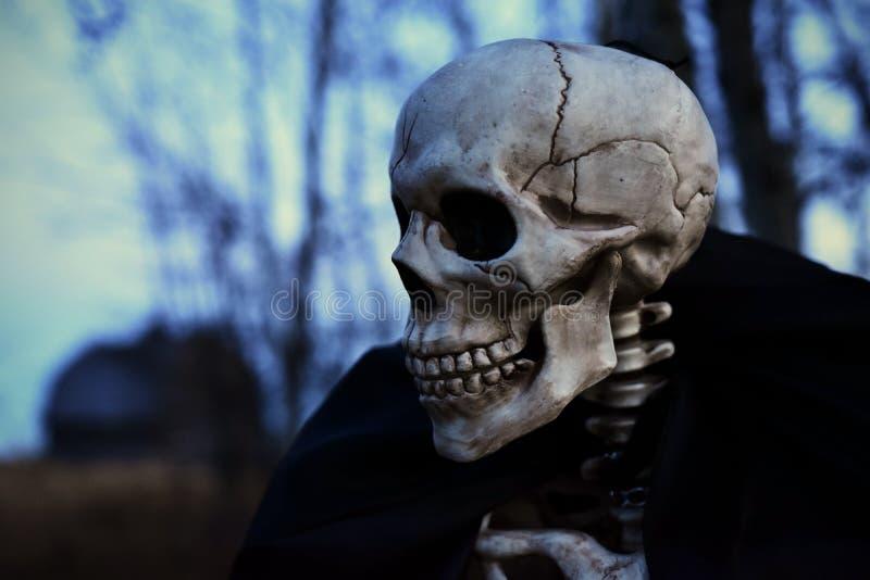 Esqueleto espeluznante de víspera de Todos los Santos foto de archivo