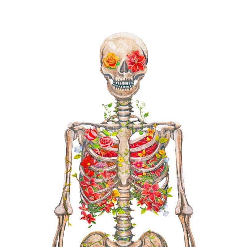 Esqueleto floreciente en el fondo blanco stock de ilustración