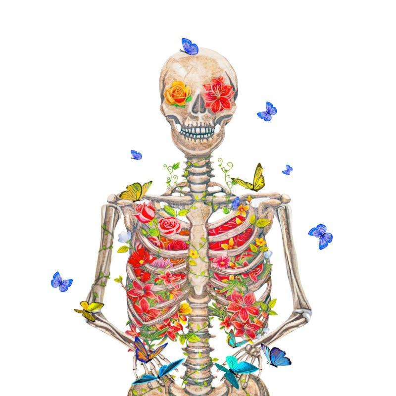 Esqueleto floreciente en el fondo blanco con las mariposas ilustración del vector