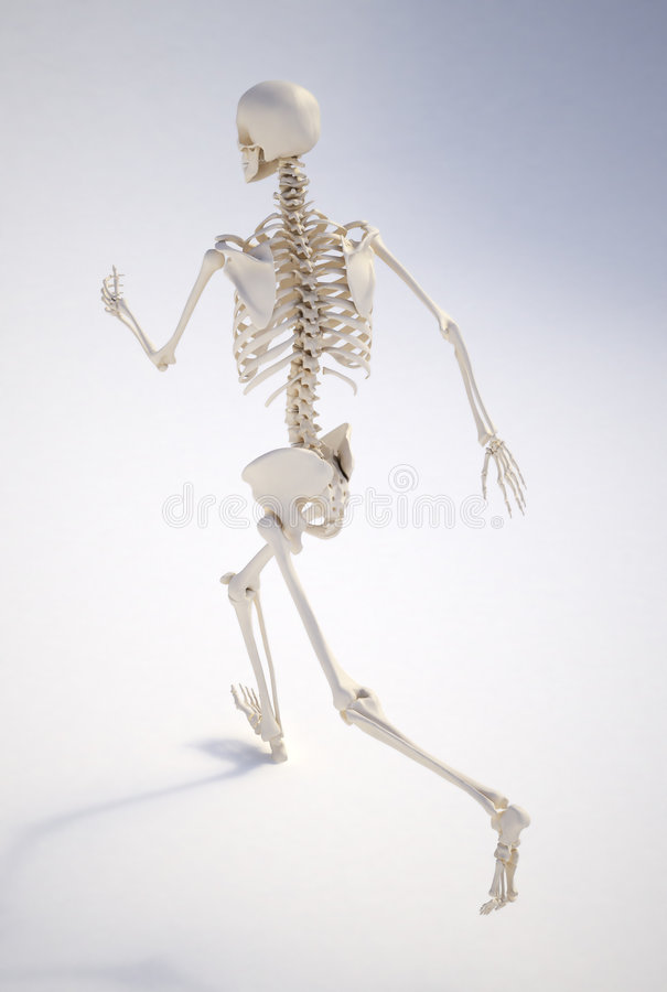 Esqueleto humano Running ilustração stock