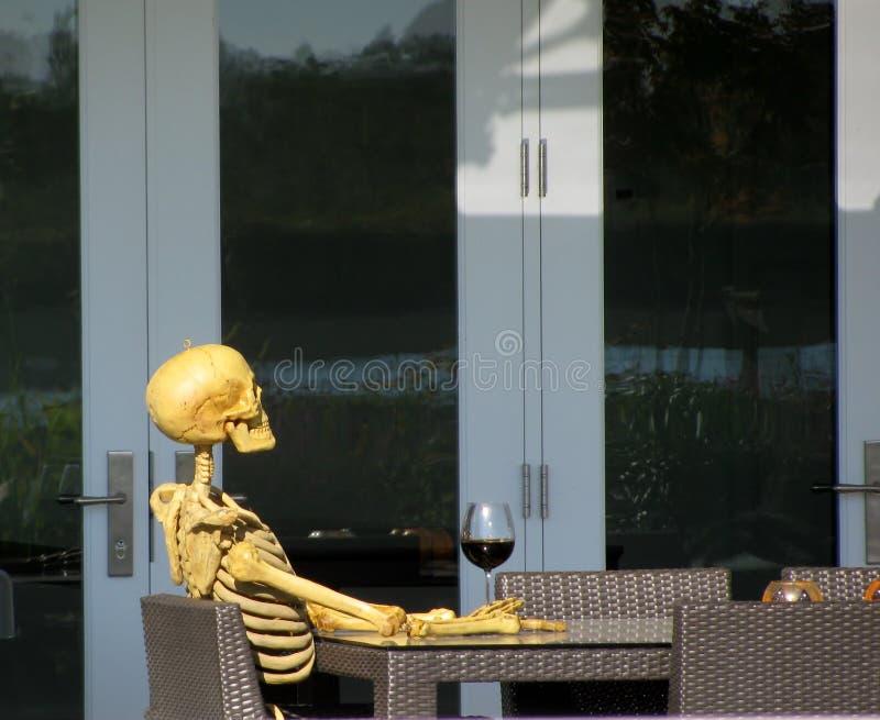 Esqueleto que bebe el vino rojo fotos de archivo libres de regalías