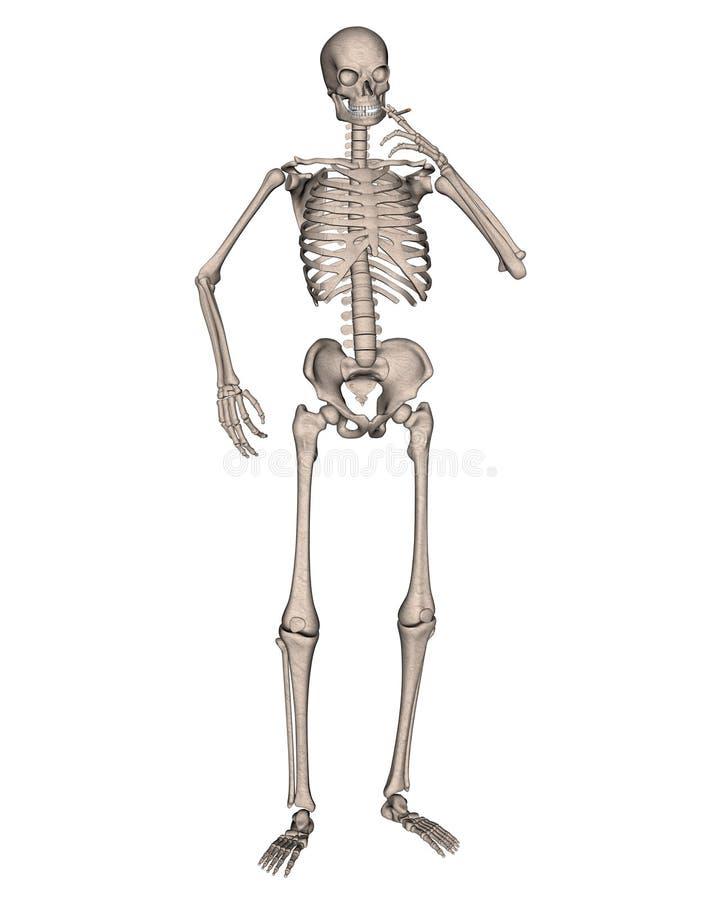 Esqueleto que fuma un cigarrillo stock de ilustración