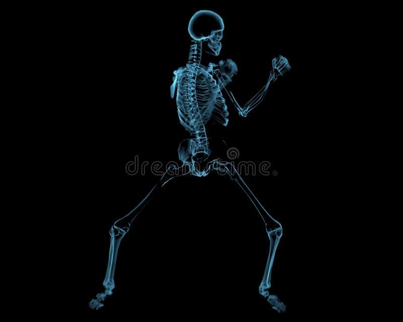 Esqueleto que lucha (transparentes azules de la radiografía 3D) ilustración del vector