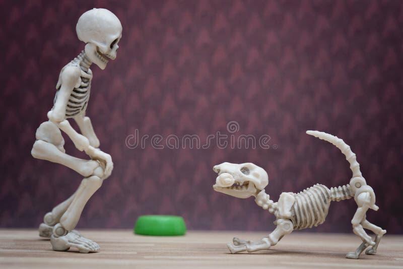 Esqueleto Y Su Perro Esquelético Imagen de archivo - Imagen de feliz ...