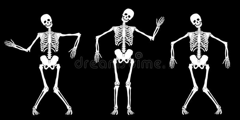 Esqueletos da dança ilustração royalty free