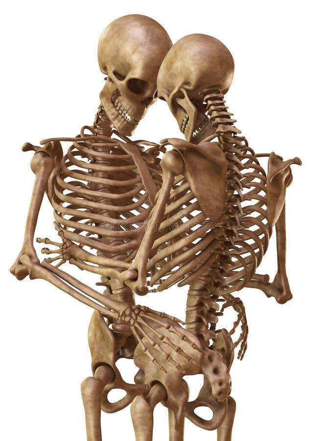 Esqueletos do homem e da mulher na pose dos amantes Isolado na ilustração branca do fundo 3d ilustração royalty free