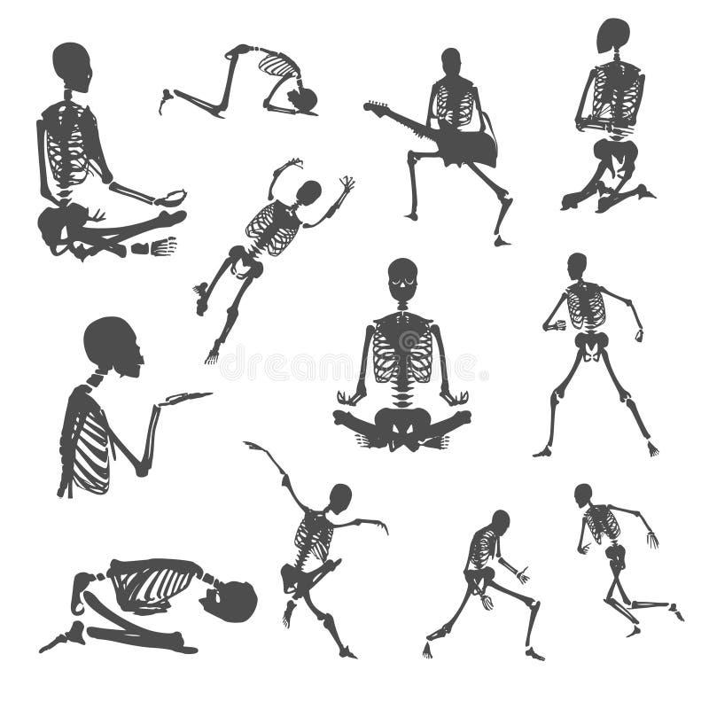 Esqueletos humanos de Halloween fijados stock de ilustración