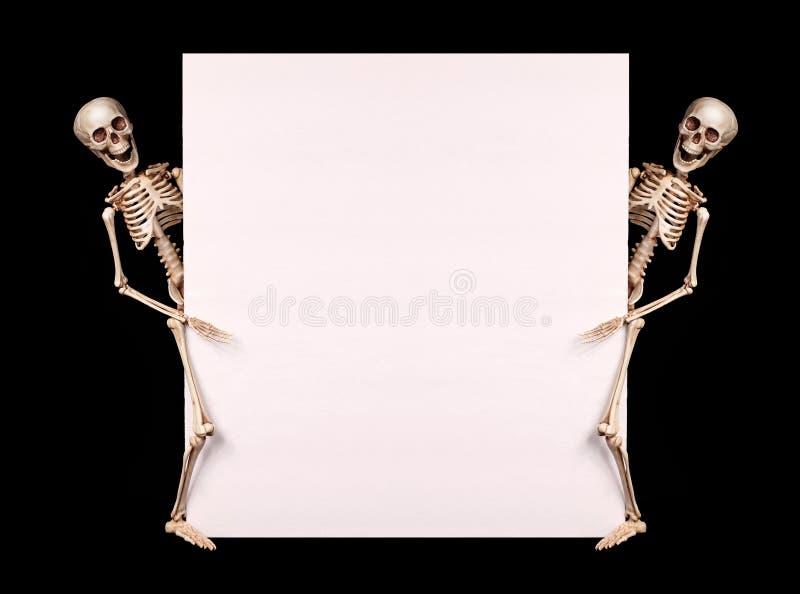 Esqueletos que guardam a placa vazia sobre o preto Halloween fotografia de stock royalty free