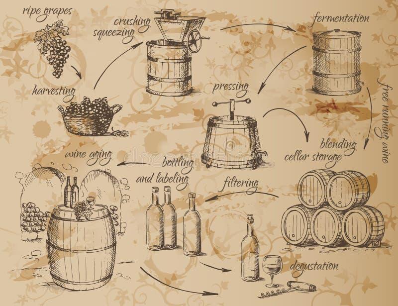 Esquema da produção de vinho ilustração stock