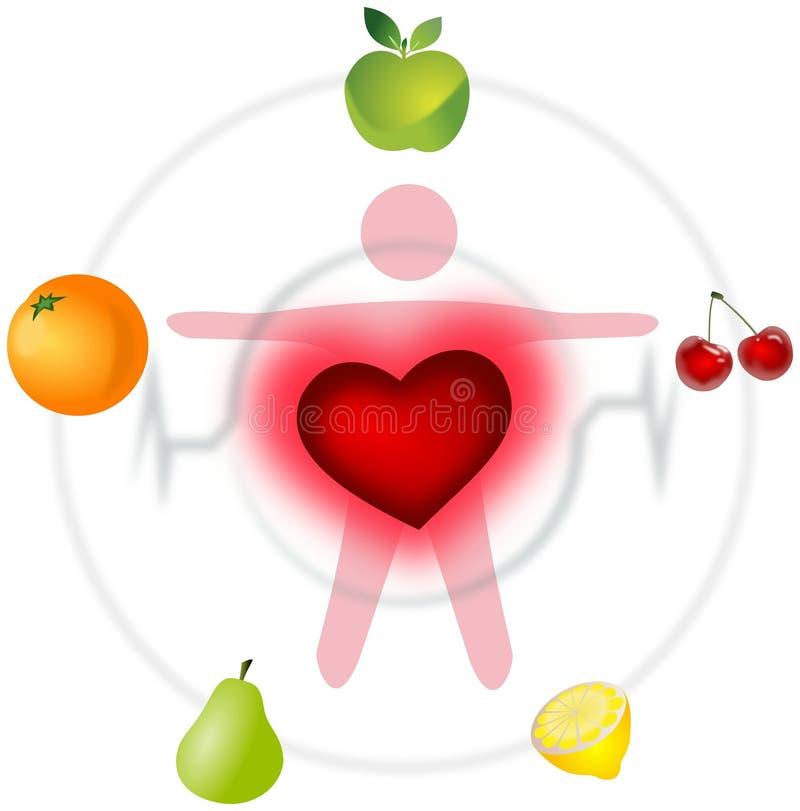 Esquema de buena salud con el corazón y las frutas stock de ilustración