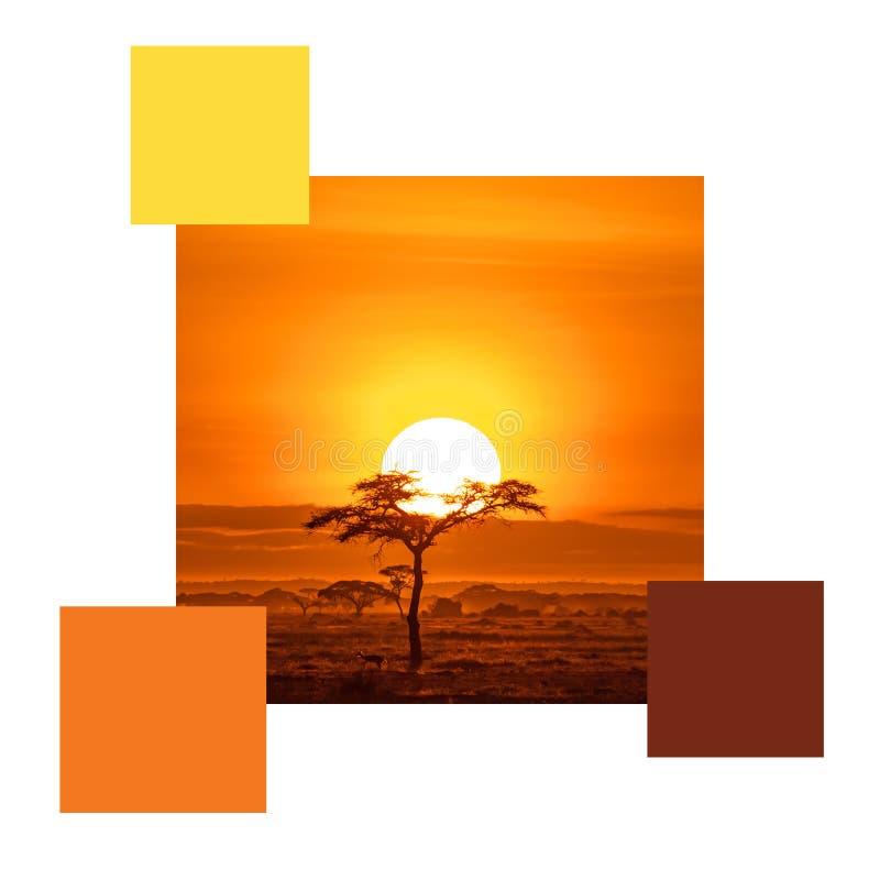 Esquema de color de la puesta del sol de Amboseli con muestras imagenes de archivo