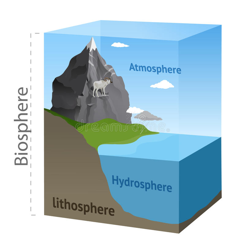 Esquema de la biosfera ilustración del vector