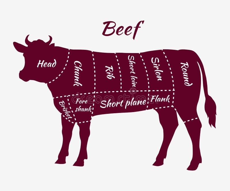 Esquema de los cortes de la carne de vaca para el filete y la carne asada stock de ilustración
