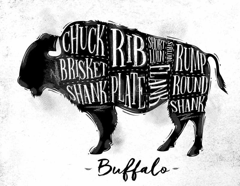 Esquema del corte del búfalo ilustración del vector