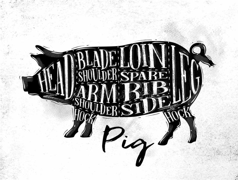 Esquema del corte del cerdo del cerdo ilustración del vector