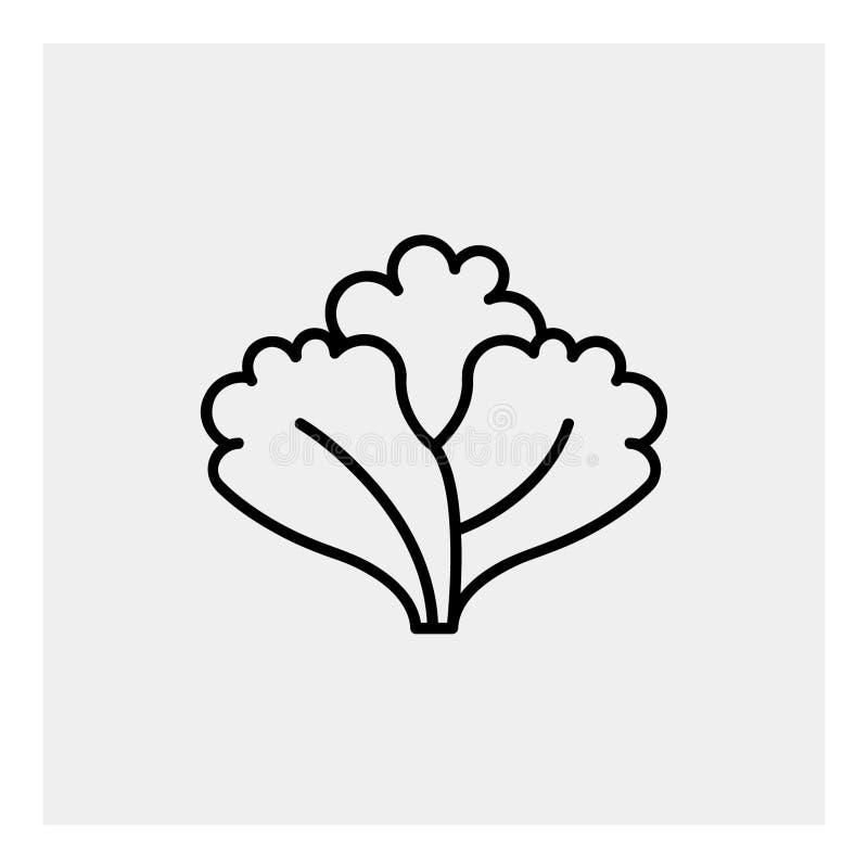 Esquema del icono de la lechuga imagen de archivo