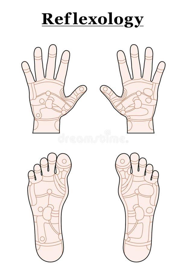 Esquema del Reflexology de la mano del pie libre illustration