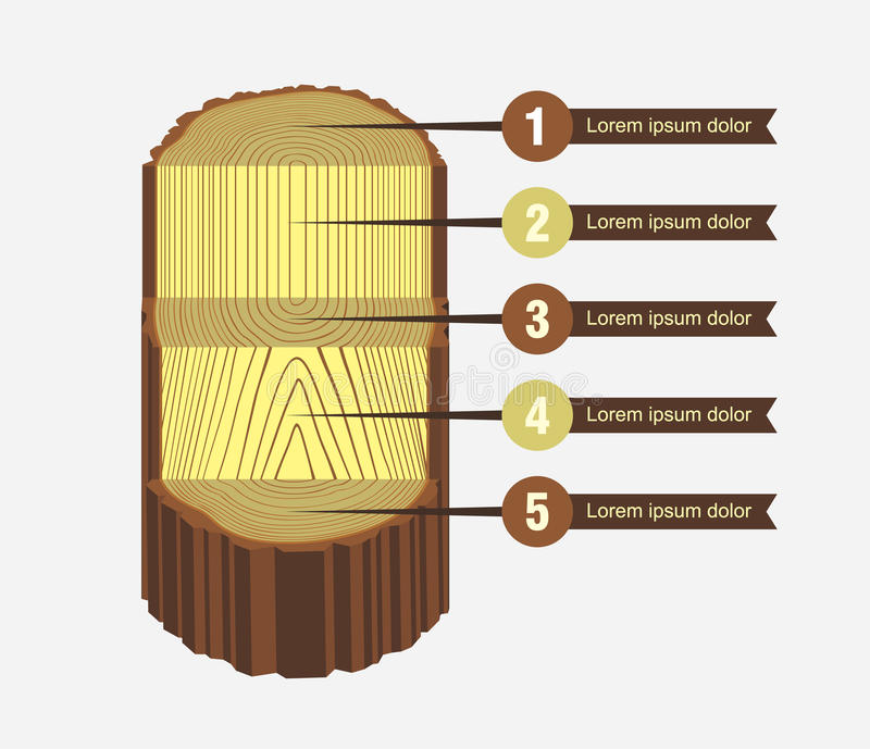 Esquema del sawing del registro del árbol stock de ilustración