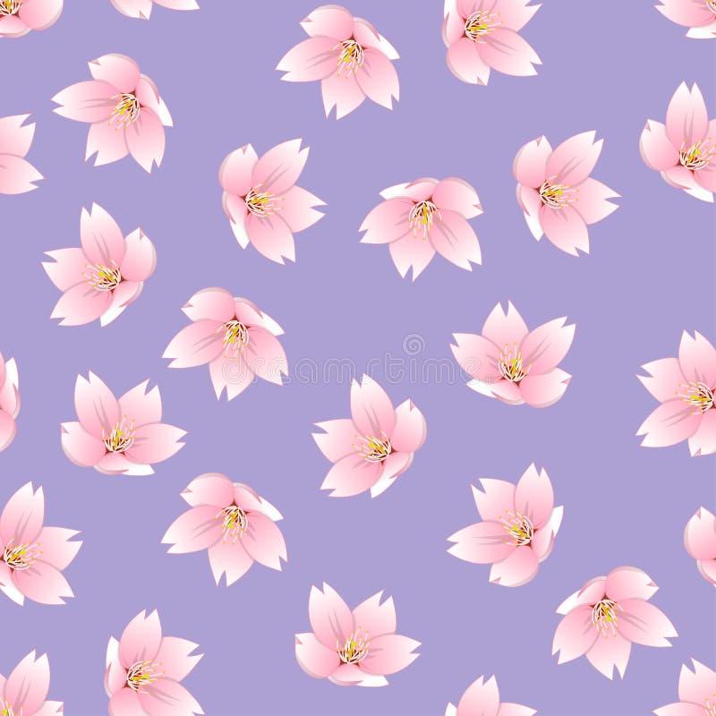 Esquema del serrulata del Prunus - flor de cerezo, Sakura en fondo rosado Ilustración del vector libre illustration