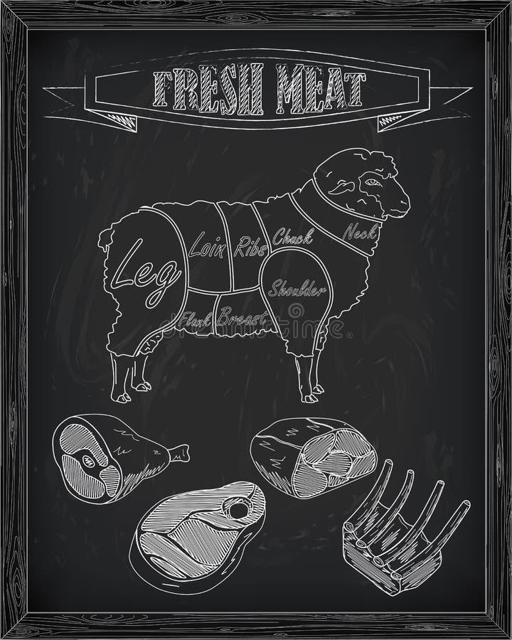 Esquema hermoso de las ovejas y de la carne del corte ilustración del vector