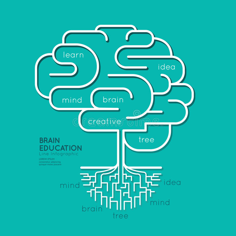 Esquema linear plano Brain Roots Concept de la educación de Infographic stock de ilustración