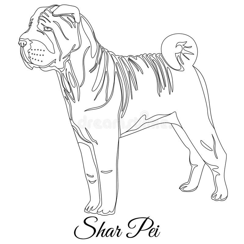 Esquema shar chino del perro del pei ilustración del vector