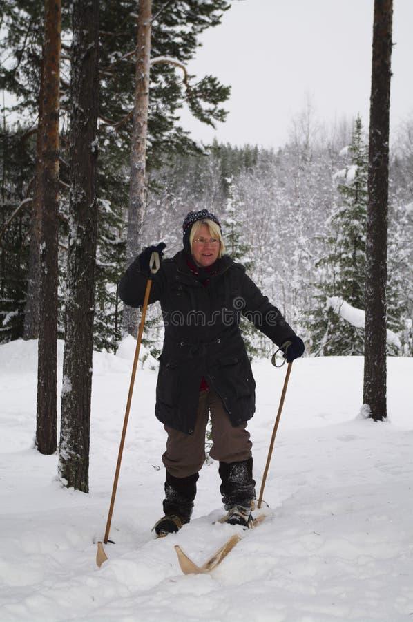 Esqui através dos campos imagem de stock royalty free