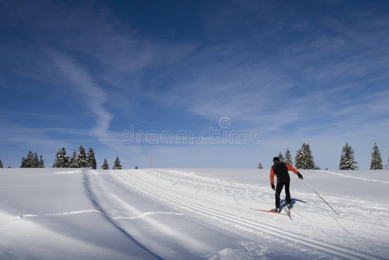 Esqui através dos campos em Switzerland fotografia de stock