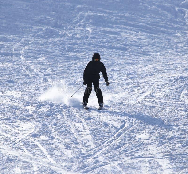Esqui do esquiador imagens de stock royalty free