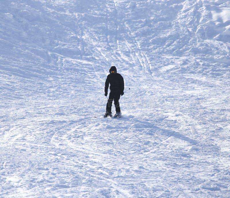 Esqui do esquiador imagem de stock
