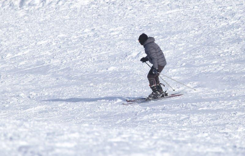 Esqui do esquiador foto de stock