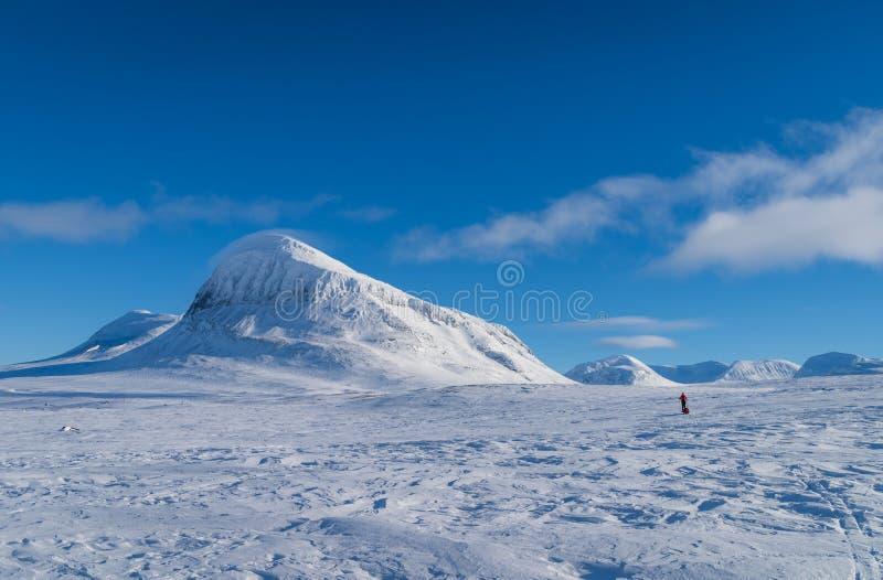 Esqui do x-país de Lapland imagem de stock