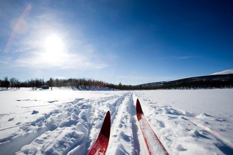 Esqui do país transversal fotos de stock royalty free